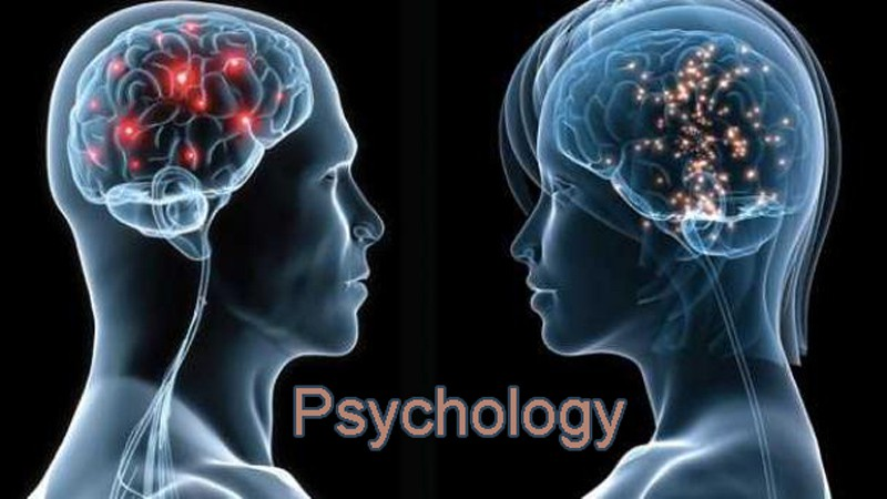 list of top ten psychology schools in texas