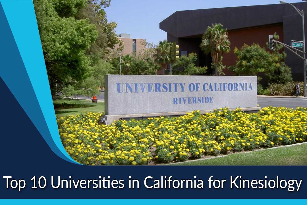 Top 10 Universities in California for Kinesiology