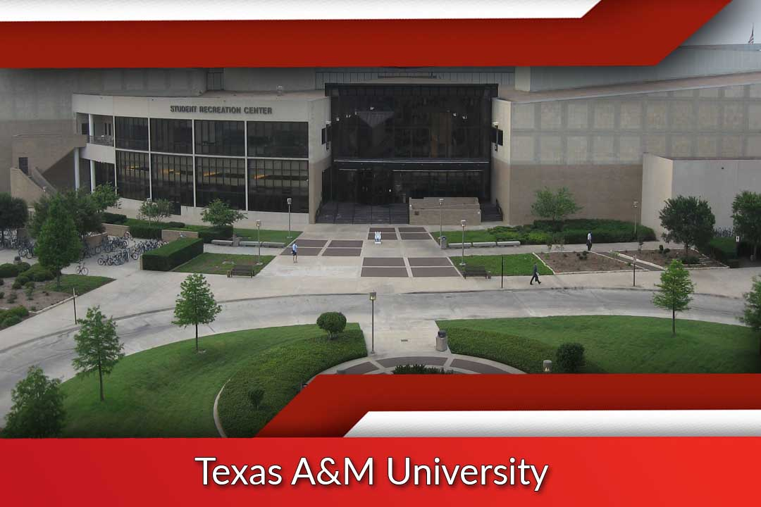 Top 10 International Business Schools in Texas