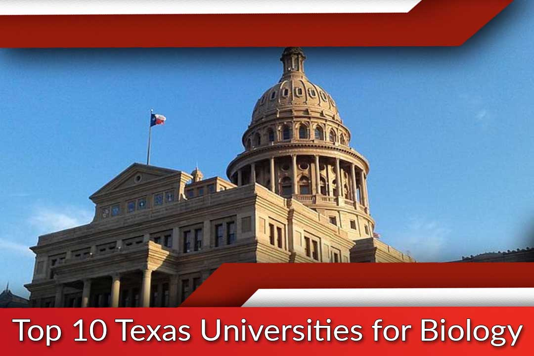 Top 10 Texas Universities for Biology