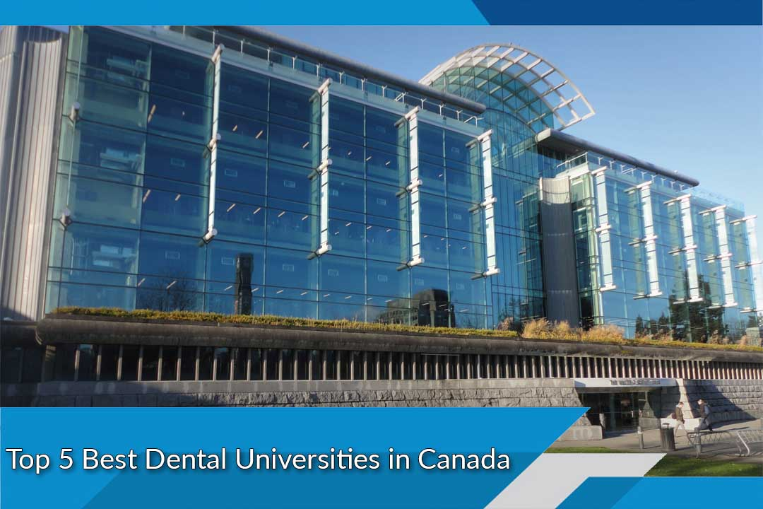 Top 5 Best Dental Universities in Canada