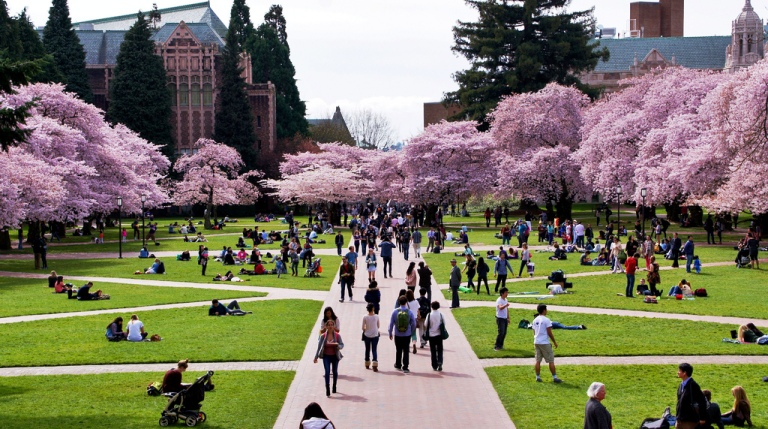 top universities in washington state